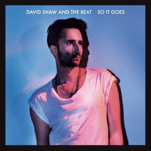 David-Shaw-So-it-goes-560x560